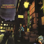 The Rise and Fall of Ziggy Stardust David Bowie Format : Album vinyle
